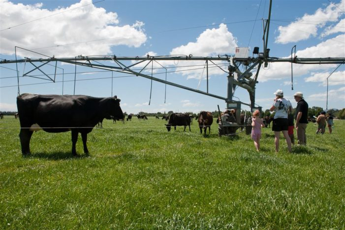 Farm Open Day showcases the dairy industry