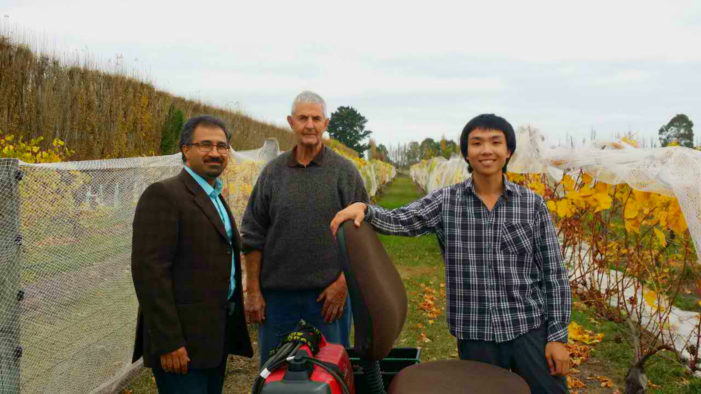 Vineyard device saves back, wet feet and time